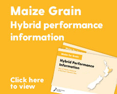 Maize for grain hybrid performance information
