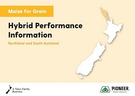 Maize Grain Hybrid Performance Information - Northland & South Auckland 2019