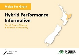 Maize Grain Hybrid Performance Information - Bay of Plenty, Gisborne & Northern Hawke's Bay 2019