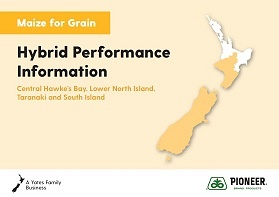 Maize Grain Hybrid Performance Information - Central Hawke's Bay, Lower North Island, Taranaki & South Island 2019