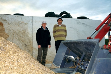 Maize silage - the key to achieving more days in milk