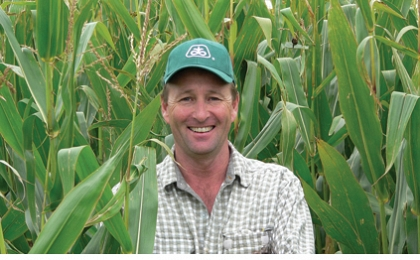 Maize silage fills feed deficits