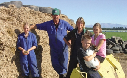 Maize silage - the preferred option