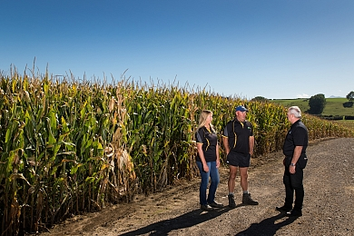 "Diversity, adaptability and a ""secret weapon"" key to successful grain operation"